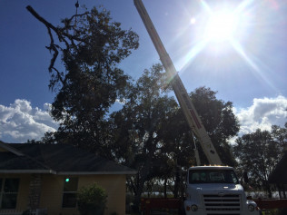 storm damage cleanup in citrus springs fl